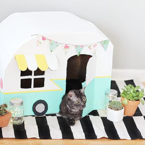 DIY cat camper