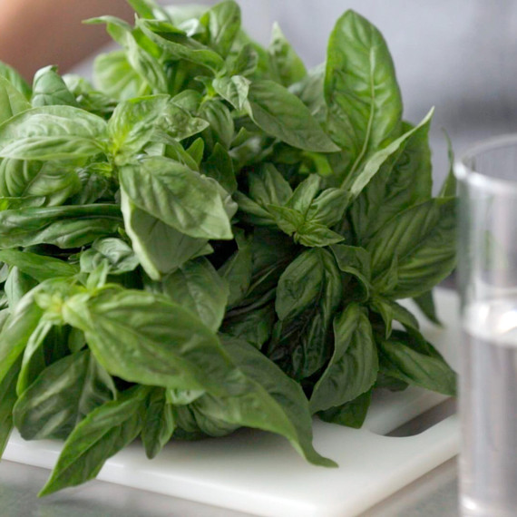 kitchen-conundrums-basil-pesto-0814.jpg
